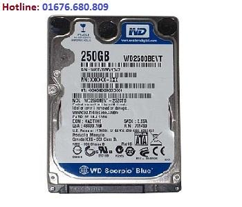 Ổ cứng Western 250GB chính hãng, giá rẻ